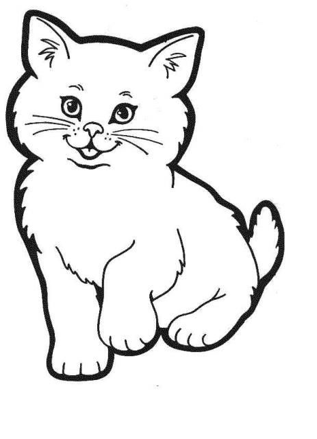 Coloriage chat - Un chat a colorier ...